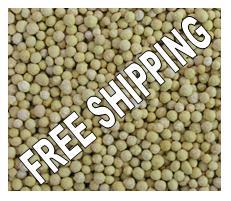 Special bromeliad fertiliser